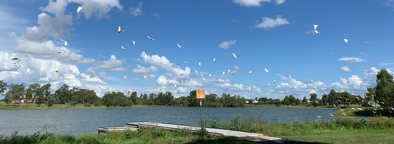 Narrabri Lake